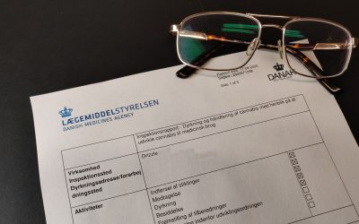 Danish Medicines Agency Audit